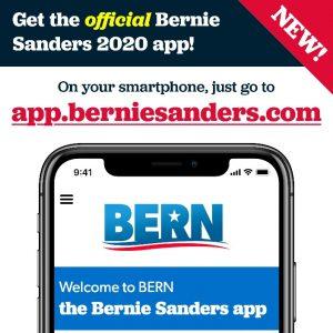 Politieke marketing in de Amerikaanse presidentsverkiezingen